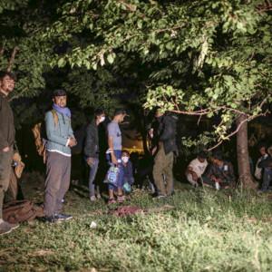 Afghans flee to Turkey, Taliban, situation in Afghanistan
