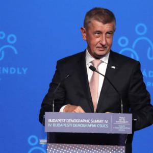 Andrej Babiš, Budapest, Demographic summit